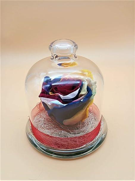 Rosa preservada Arco Iris. Gratis TU ENVÍO. Rosa eterna Multicolor Arco Iris en cúpula de Cristal. Hecho en España.: Amazon.es: Hogar