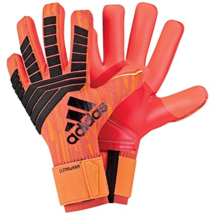 9fd7e6de7ae Amazon.com : adidas Predator Climawarm Goalkeeper Gloves with Weather Proof  Fabric to Keep You Warm in Cold Conditions Soccer Gloves : Sports & Outdoors