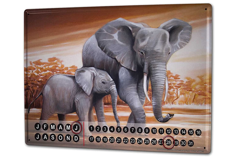 Dauer Wand Kalender Afrika Elefant Warminski Dickhäuter Metall Magnet