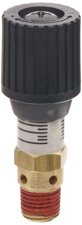 Control Devices CR Series Brass Pressure Relief Valve, 0-100 psi Adjustable Pressure Range, 1/4'' Male NPT