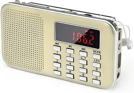 Radio de Transistor portátil pequeña, L-218 Radio Am/FM Digital de Bolsillo con Tarjeta Micro TF Reproductor de MP3 de Entrada Auxiliar de Disco USB, por PRUNUS(Dorado): Amazon.es: Electrónica