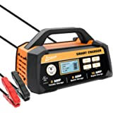 Ampeak 2/8/15A 12V Smart Battery Charger/Maintainer Automatic with Winter Mode