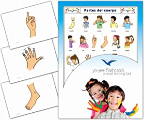 Tarjetas de vocabulario -Partes del Cuerpo - Body Parts Flashcards in Spanish for Toddlers 2