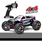 Fast Rc Cars, Demaxis Rtr Electric Remote Control Car Truggy 4x4 High Speed 32 mph Rc Buggy Truggy 1/24 Scale (Purple)