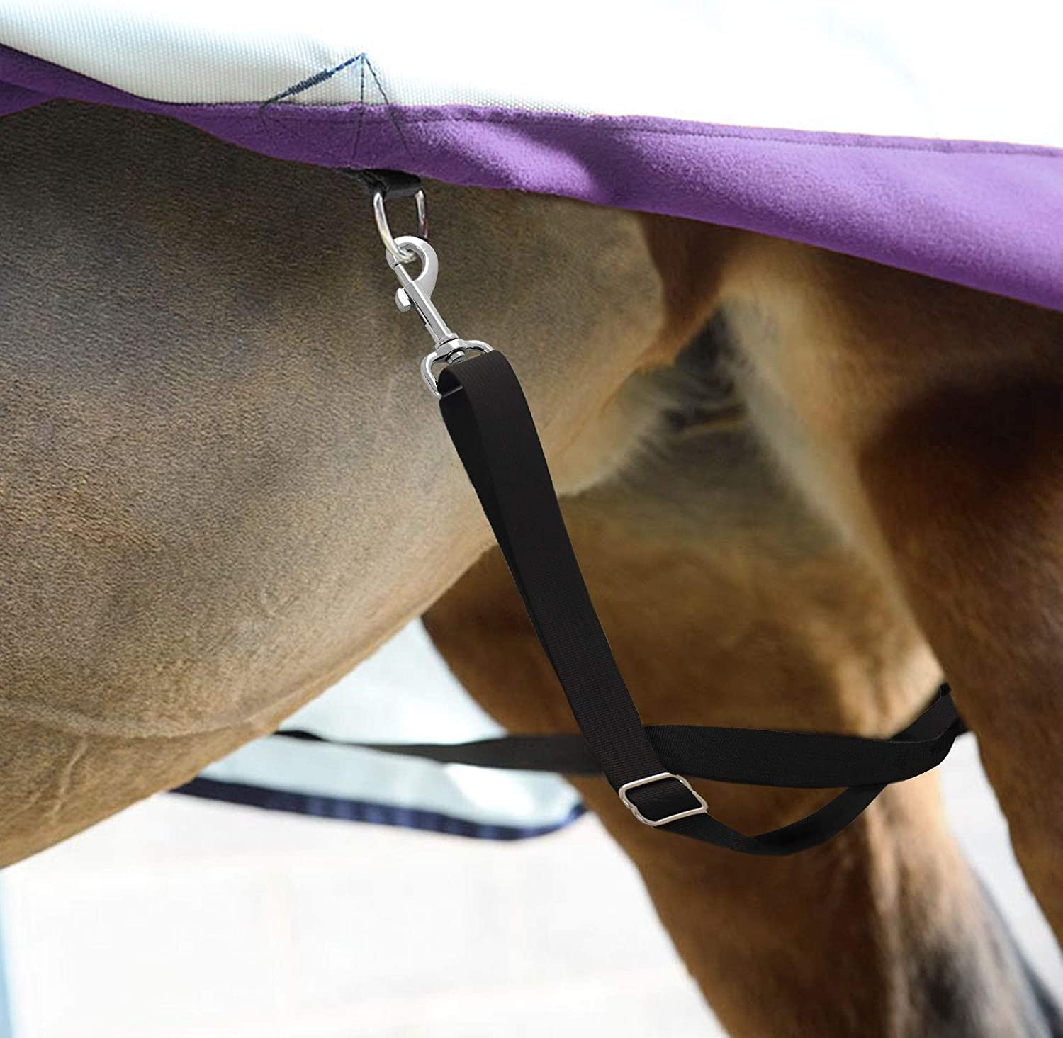 Harrison Howard Essential Fully Horse Blanket Sheet Replacement Elastic Leg Straps Adjustable Length with Flexibility