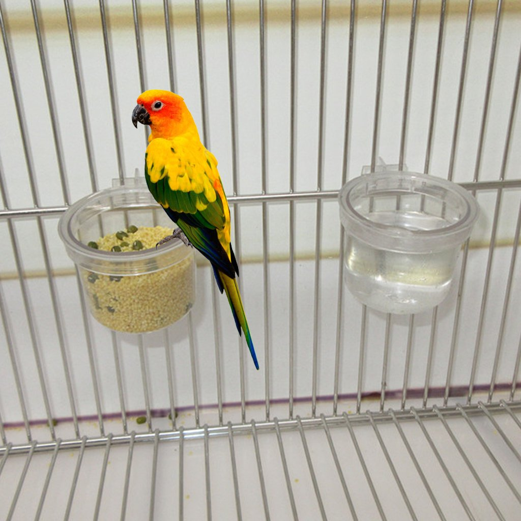 Hukai Birds Parrot Feeder Pets Clear Acrylic Feeding Bowl Cage Food Water Holder Round Birds Parrot Feeder Pets Clear Acrylic Feeding Bowl Cage Food Water Holder Round