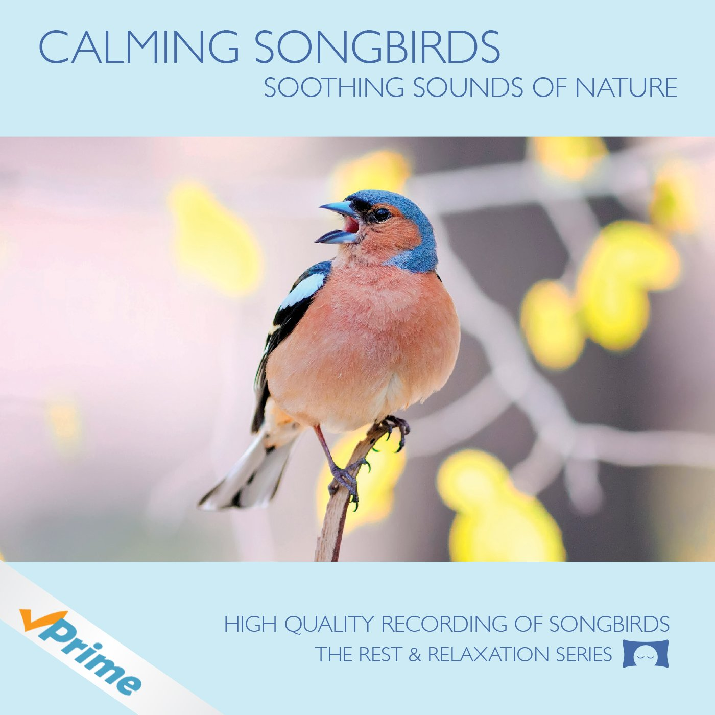 Calming Songbirds - Nature Sounds Recording Of Bird Calls - For Meditation, Relaxation and Creating a Soothing Atmosphere - Nature's Perfect White Noise - by The Rhythm Tree - The Rest and Relaxation Series