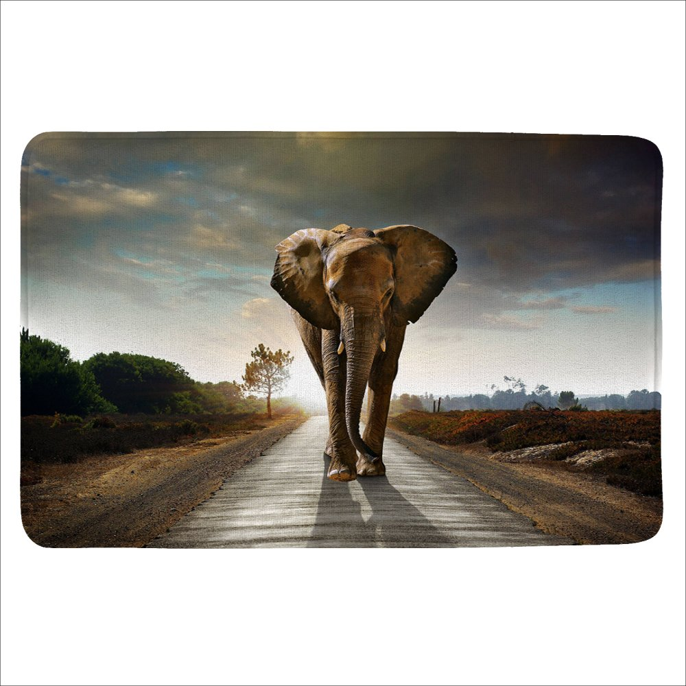 ALFALFA Bath Rug, Non Slip Mat, Bathmat, Doormat, Thick Synthetic Sponge And Super Soft Microfiber Flannel Fabric,Absorbent, Animal Design Theme 16'' W x 24'' L (40 x 60 CM)-Road Walking Elephants