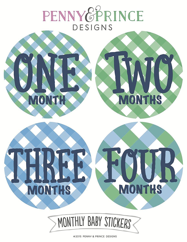 100%本物保証! Monthly Baby Stickers, Plaid, LLC Baby Baby Prince Boy, Gingham by Penny & Prince Designs LLC B00Z8BE2K0, キソムラ:bb5474ae --- mvd.ee