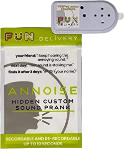 FUN delivery Annoise Hidden Recordable Annoying Sound Prank Gag Joke