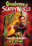Diary of a Dummy (Goosebumps SlappyWorld #10)