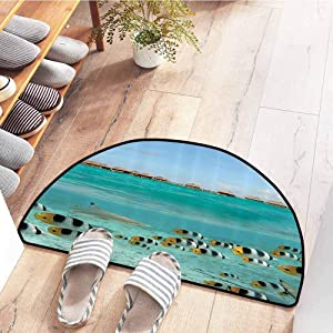 SEMZUXCVO Interior Door mat Ocean Decor Collection Blacktip Reef Shark Chasing Butterfly Fish in Shallow Clear Water Lagoon of Bora Bora an Island Picture Easy to Clean Carpet W31 x L20