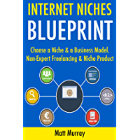 Internet Niches Blueprint: Choose a Niche & a Business Model. Non-Expert Freelancing & Niche Product Marketing. (English Edition)