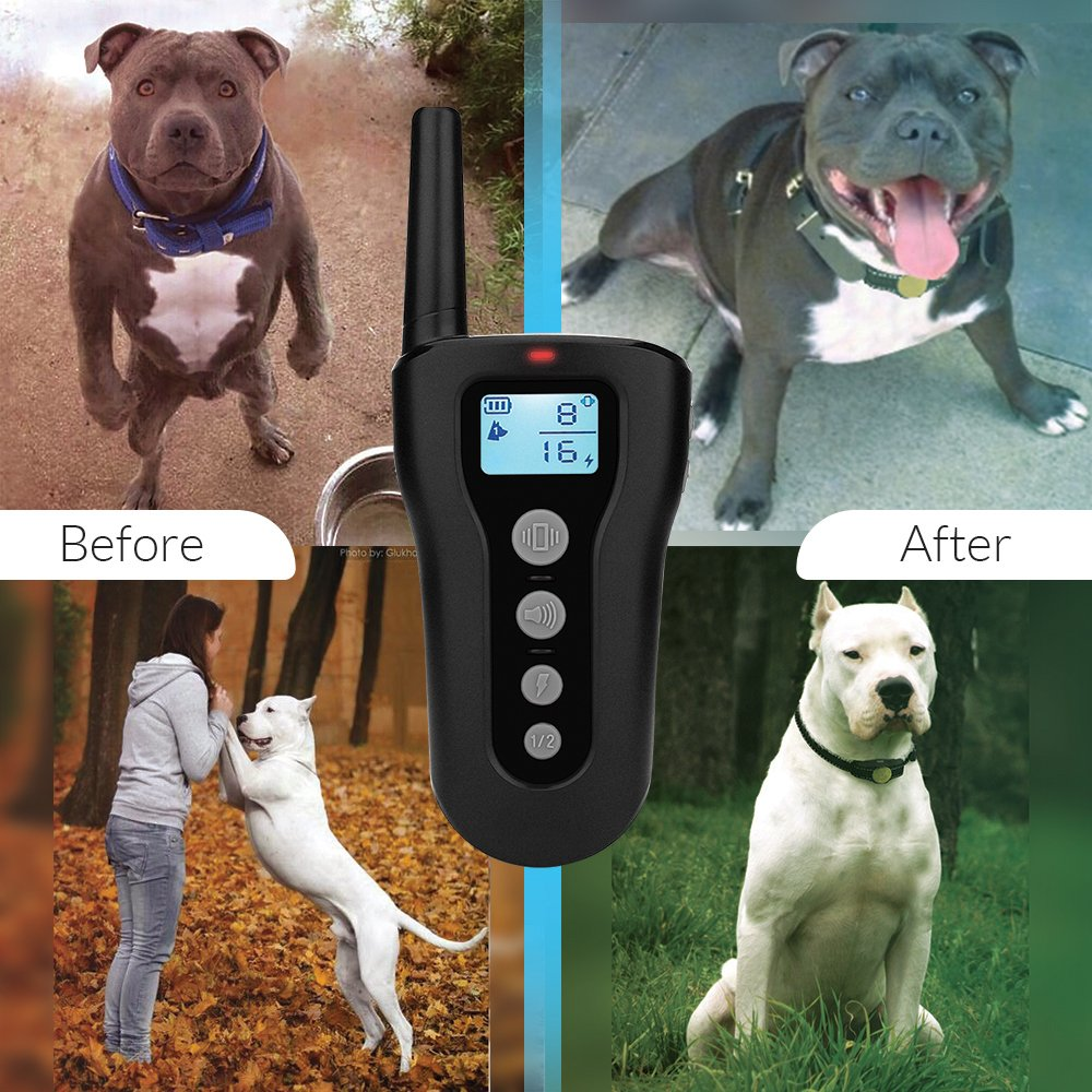 Amakin Shock Collar Dogs. 2018 Upgraded 1000ft Dog Training Collar Remote Small Medium Large Dogs. Rechargeable & Waterproof Beep, Vibration & Shock. Training Clicker Whistle Included.
