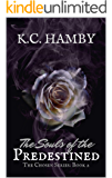 The Souls of the Predestined (The Chosen Series Book 2)