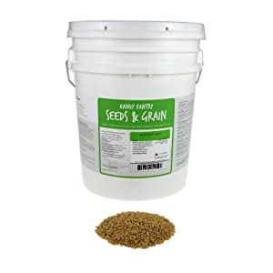 Handy Pantry Organic Barley Grass - 30 Lbs - Whole (Hull Intact) Barleygrass Seed - Ornamental Barley Grass, Juicing - Grain for Beer Making, Emergency Food Storage & More Product Name