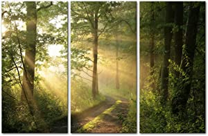 My Easy Art- Tree Wall Art Decor Sunshine Through Forest and Road Canvas Pictures Artwork 3 Panel Nuture Landscape Painting Prints for Home Living Dining Room Kitchen