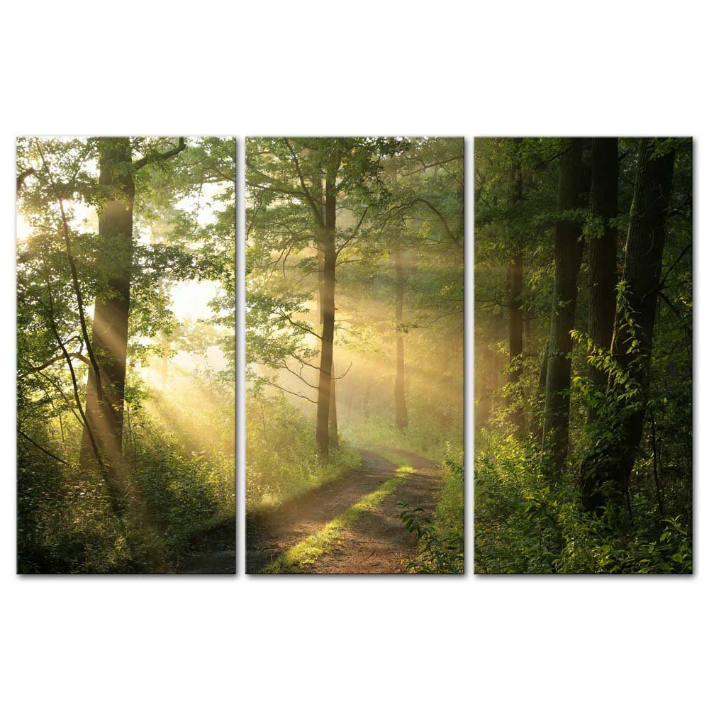 3 Pieces Modern Canvas Painting Wall Art The Picture for Home Decoration Dirt Road Deciduous Forest Green Trees Foggy Morning Spring Landscape Forest Print On Canvas Giclee Artwork for Wall Decor