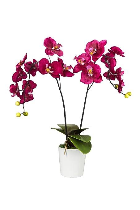 silkenbloom artificial morado vino Seda Arreglo Orquídea en Maceta redonda cerámica Phalaenopsis