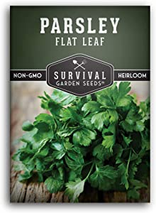 Survival Garden Seeds - Flat Leaf Italian Parsley Seed for Planting - Packet with Instructions to Plant and Grow in Your Home Vegetable Garden - Non-GMO Heirloom Variety