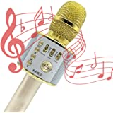 Microphone Sans Fil Pour iPad iOS Android Téléphone Intelligent PC avec Musique Lecture, pour KTV, Fête, Conférence, Spectacle, Bar, Réunion