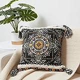 WLNUI Boho Black Decorative Pillow Cover 18x18 Inch Woven Tufted Tassel Throw Pillow Cover Accent Cream Cushion Case for Farm