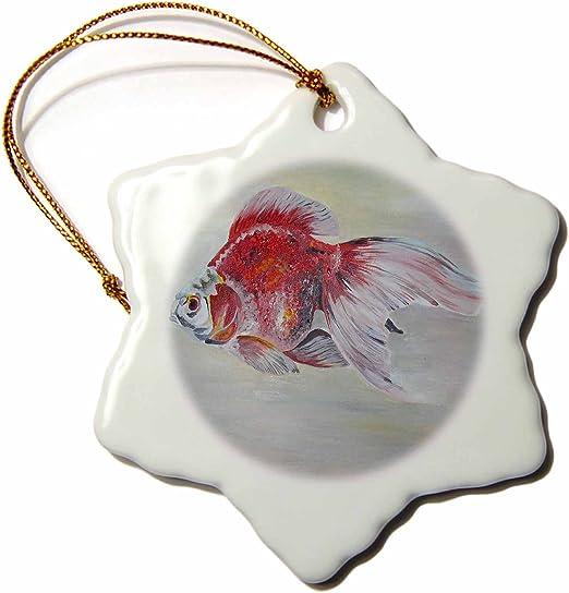 Amazon Com 3drose Orn 46749 1 Ryukin Goldfish Goldfish