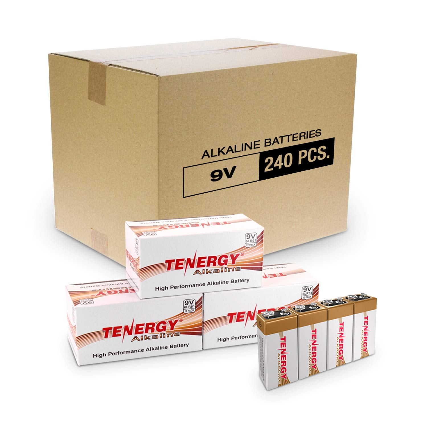 Tenergy 6LR61 9V Alkaline Battery, Non-Rechargeable Battery for Smoke Alarms, Guitar Pickups, Microphones and More, 240-Pack by Tenergy