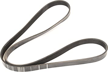 Serpentine Belt General Motors 12637204