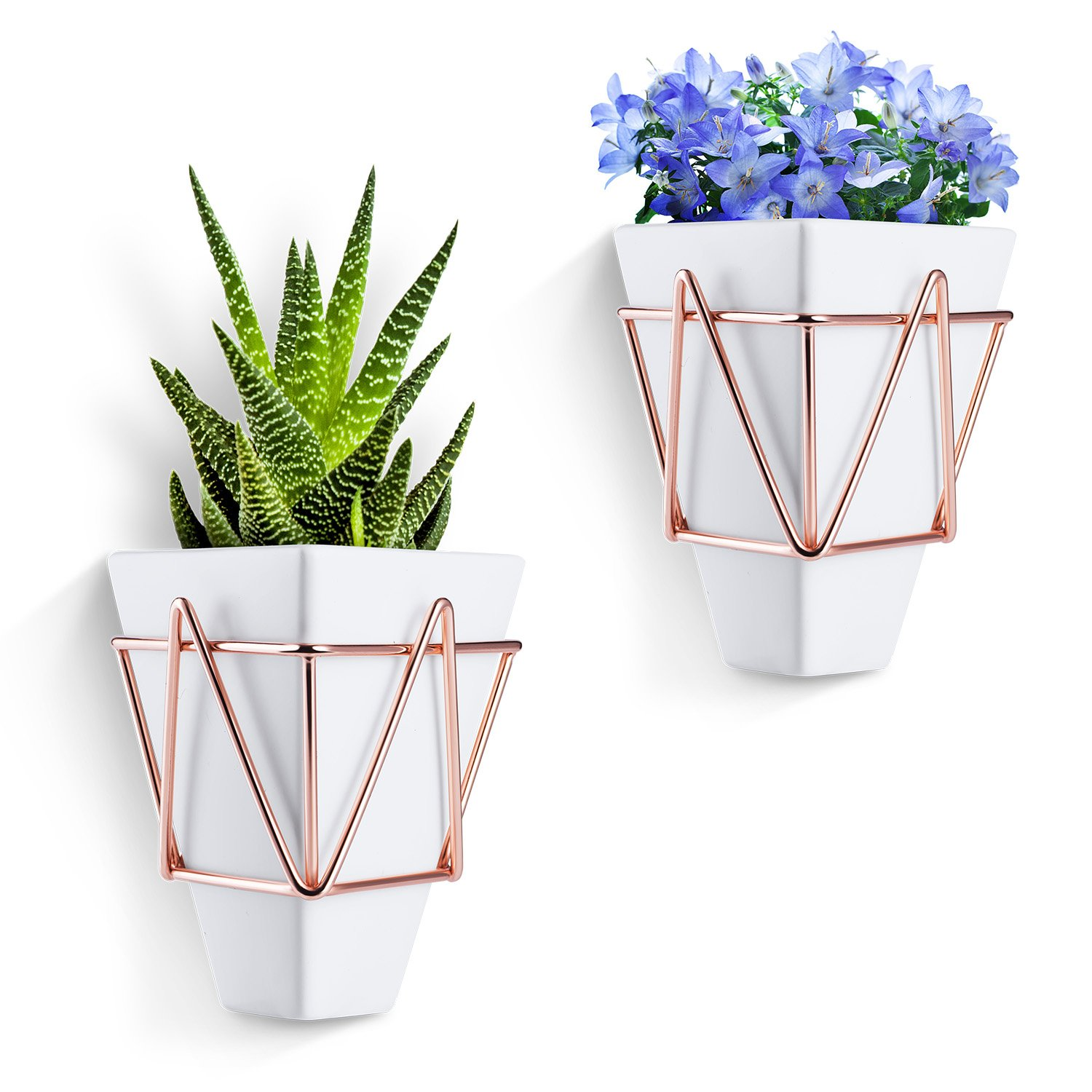Love-KANKEI Wall and Desk Planters ...