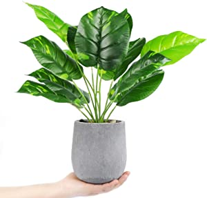 """Der Rose 16"""" Small Fake Plants Artificial Mini Potted Faux Plants for Office Desk Home Bathroom Decor"""
