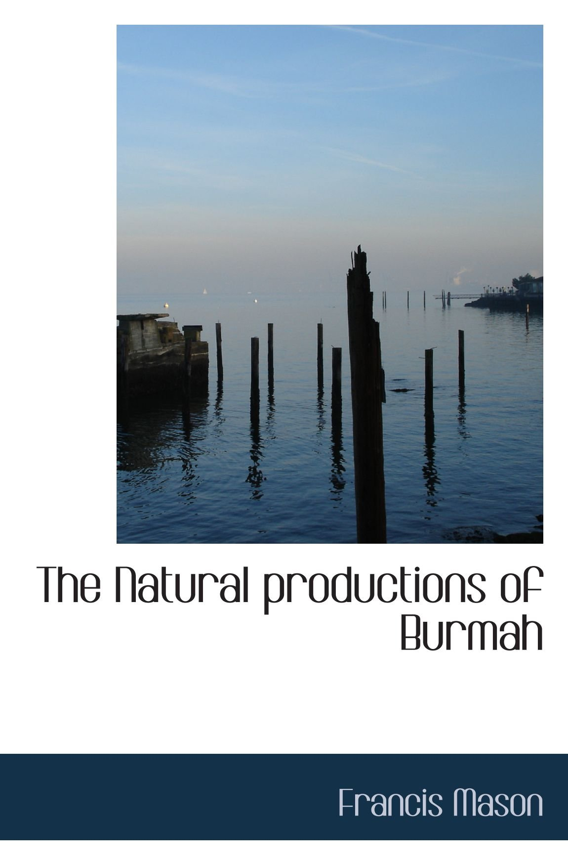 Download The Natural productions of Burmah pdf