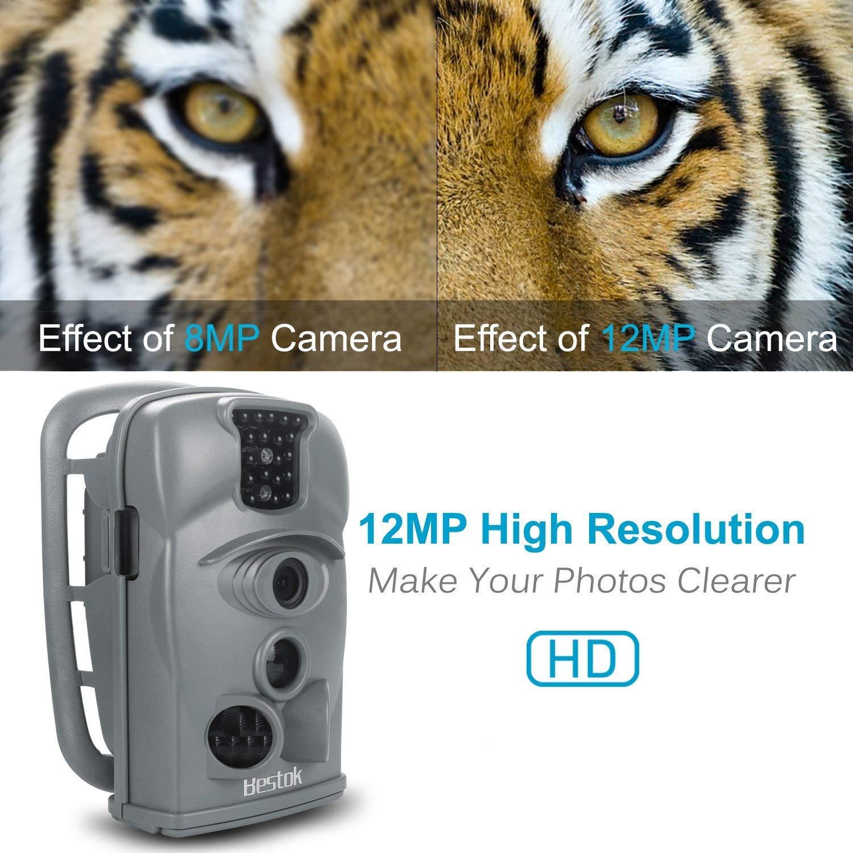 Bestok Cámara de Caza 12MP 1080P Cámara de Vigilancia Trail Cámara (Gris): Amazon.es: Deportes y aire libre