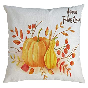 Amazon.com: Mkcether Decorative Pillow Covers, Thanksgiving ...
