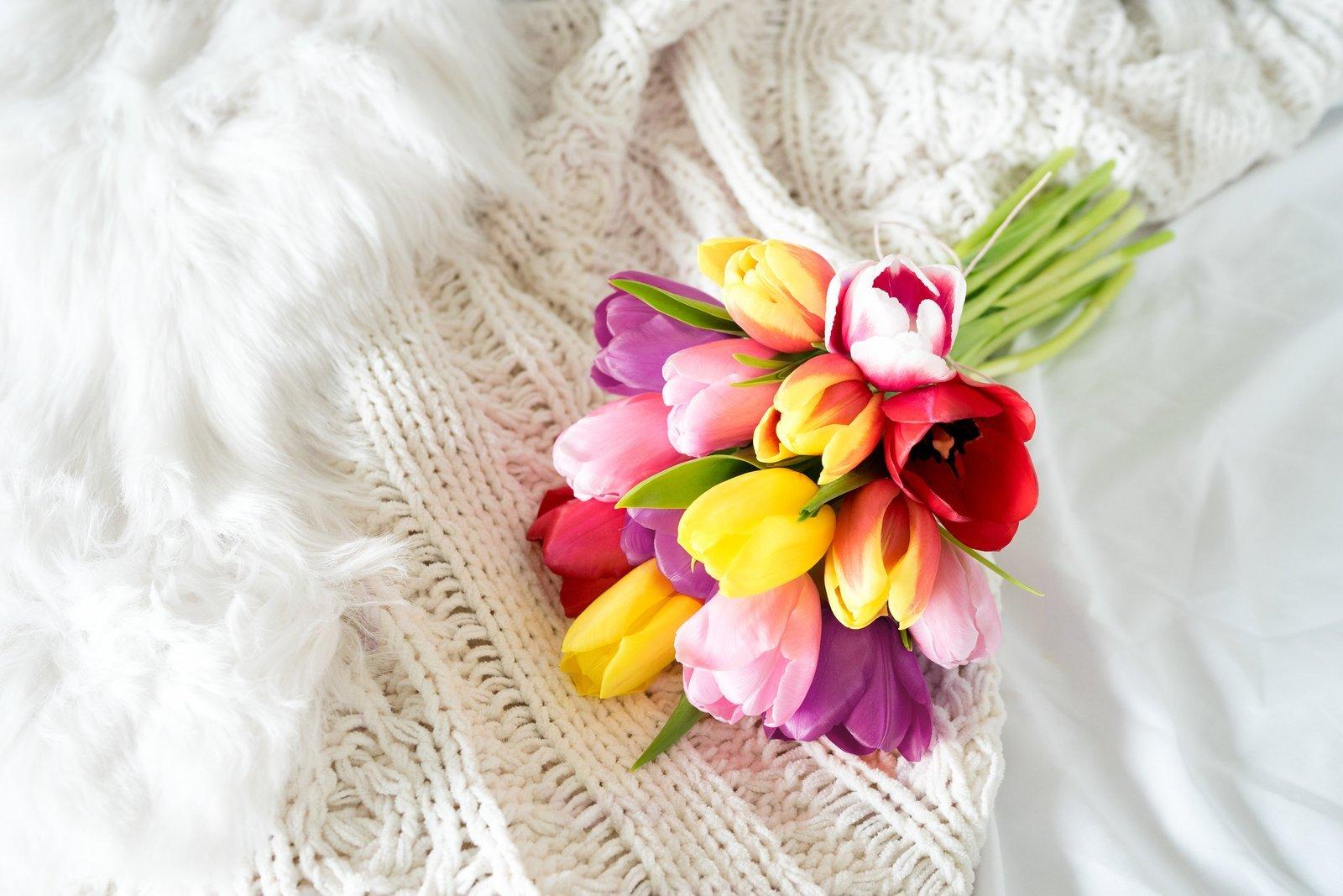 Flowers-Rainbow-Tulip-Bouquet-15-Stems