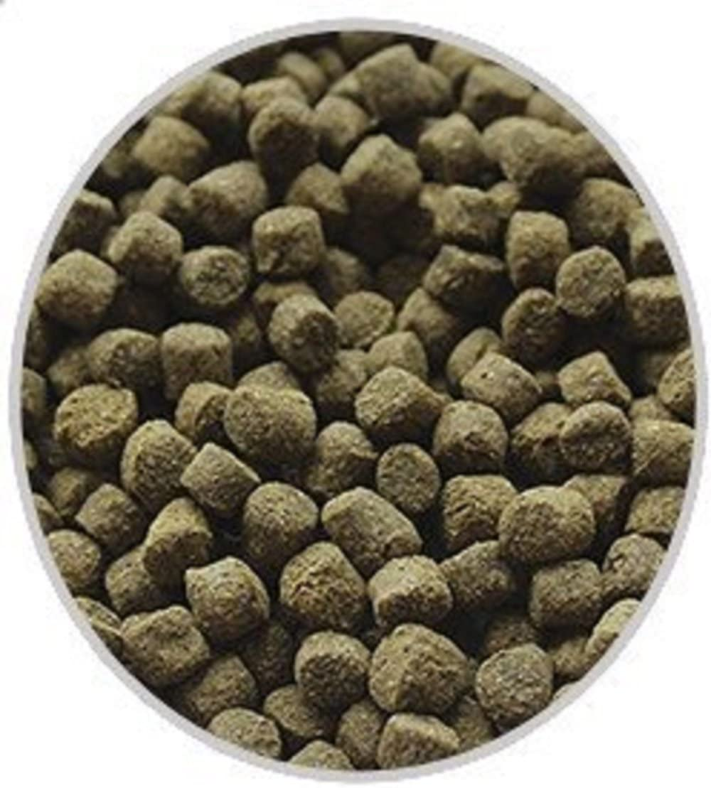 America's Best Koi Food 20 lbs Koi Fish Food Floating Pond Pellets with Wheat Germ and Spirulina 35% Premium Protein 5.5 mm Pellets
