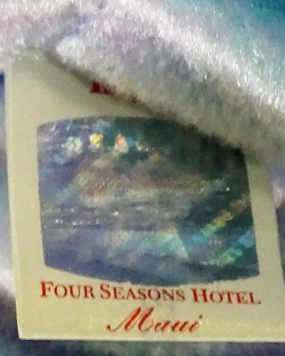 Toy Four Seasons Hotel Caracas Issy the Bear Ty Beanie Babies