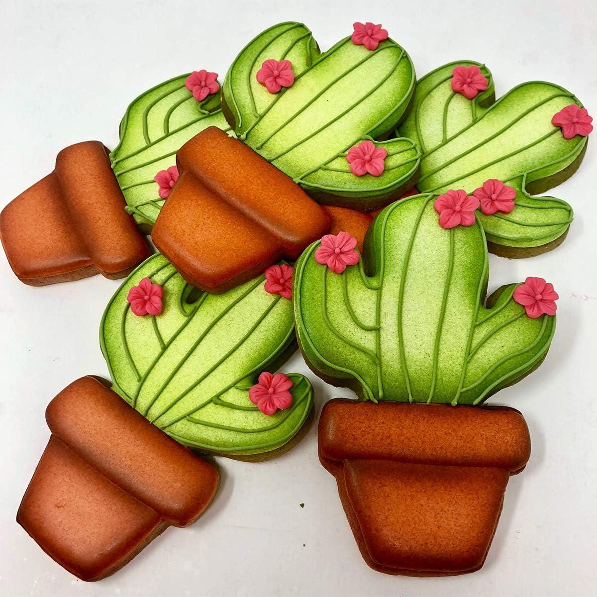 Ann Clark Cookie Cutters Ensemble de 4 emporte-pi/èces lama et cactus avec livret de recettes Acier de fabrication am/éricaine