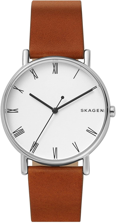 [スカーゲン]SKAGEN 腕時計 SIGNATUR SKW6427 メンズ 【正規輸入品】 B076HFJQ7N