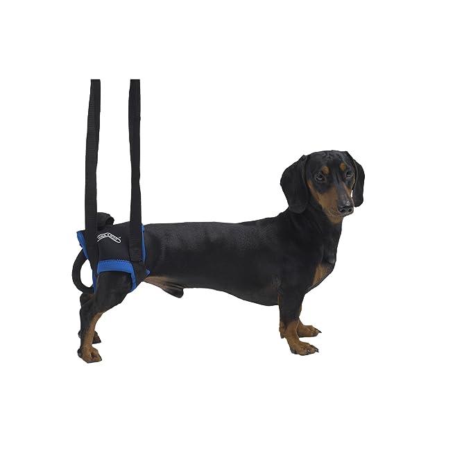 Kruuse - Arnés de rehabilitación con tiras que eleva las piernas traseras para perros (Grande