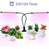 Beelux LED Grow Light 20W Dual Head 40 LEDs 2:1 Red Blue Spectrum Small Lamp with 360 Degree Adjustable Gooseneck 10 Dimmable
