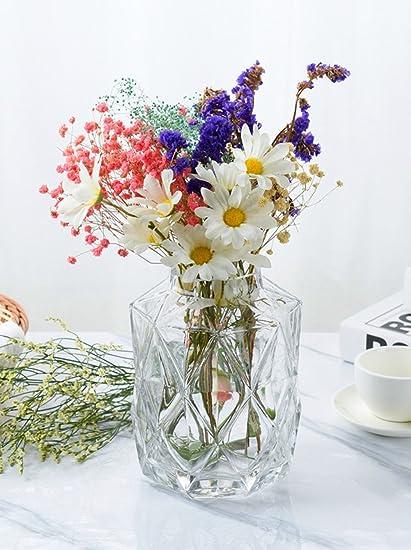 Hometopia Vase Glass Glass Vases for Flowers Glass Flower Vases for Wedding Flower  sc 1 st  Amazon.com & Amazon.com: Hometopia Vase Glass Glass Vases for Flowers Glass ...