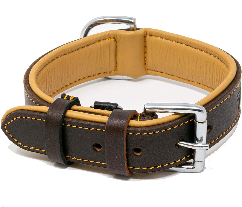 Riparo - Collar ajustable de piel auténtica acolchada para perro K-9, 3,8 cm de ancho, para cuello de 45,7 cm a 53,3 cm (grande, marrón)