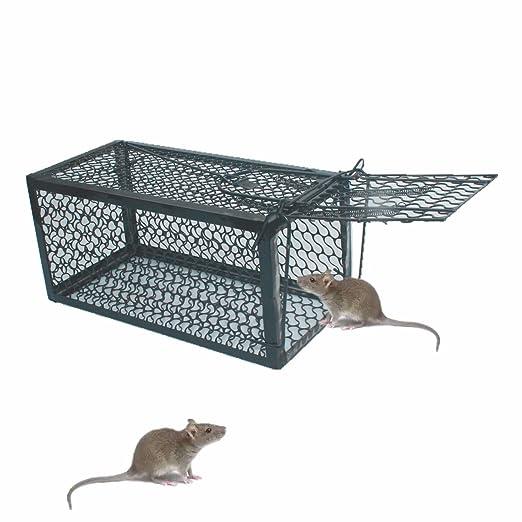 skycabin Trampa de Jaula para Ratón, Ratas, Hamster, Topo, Mustela ...