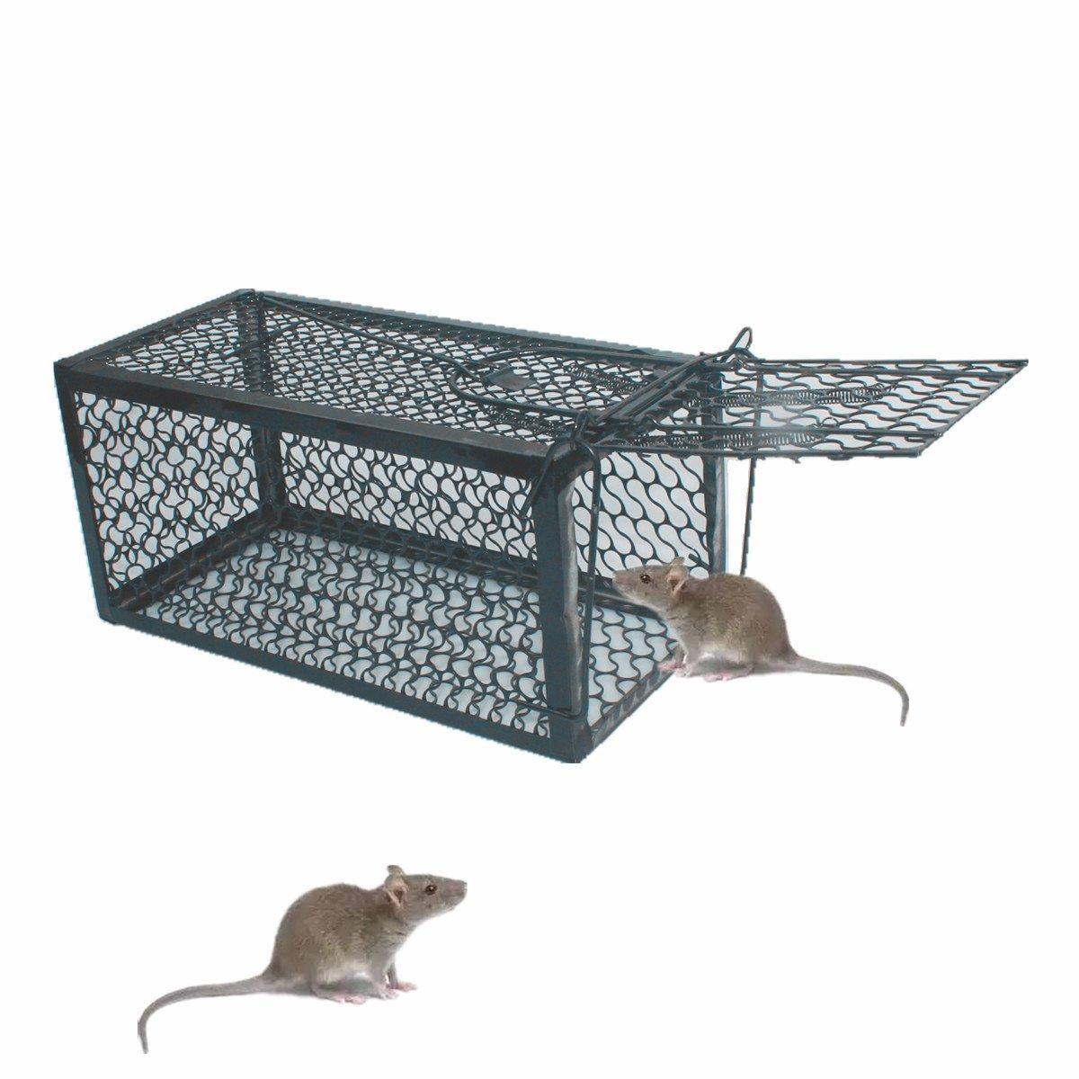 TIFANTI ratón Hierro Jaula Trampa, Humano para ratón, Ratas, Hamster, Topo,