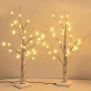 JACKYLED Upgraded 2FT 28 LED Lighted Birch Tree with Timer & USB Cable Battery Operated Warm White Birch Tree with Light Tabletop Bonsai Tree Light Decor for Home/Christmas/Party/Wedding