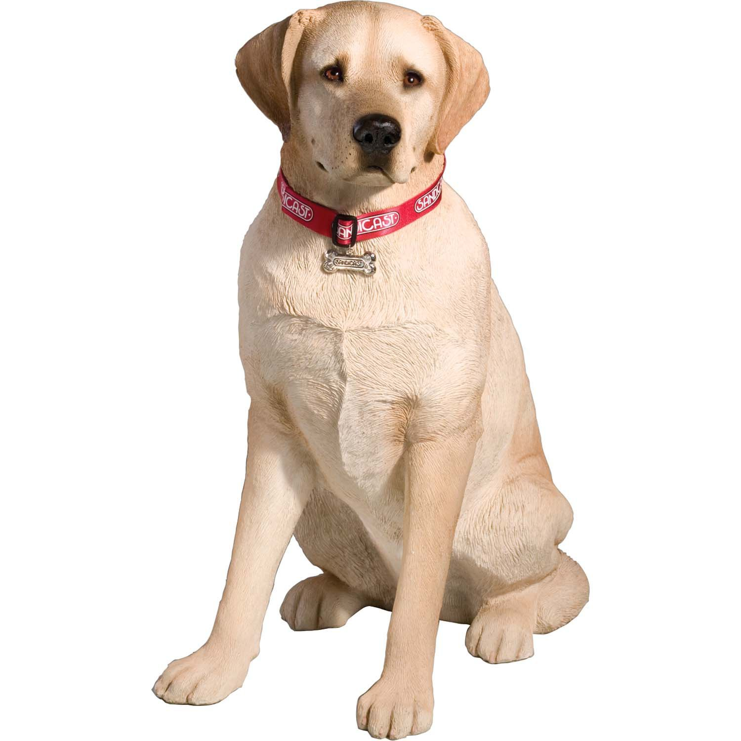amazon com sandicast large life size yellow labrador retriever