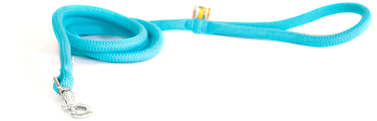 Teal xs Teal xs Yellow Dog Design Round Braided Lead for Dogs, 3 8-Inch, Teal