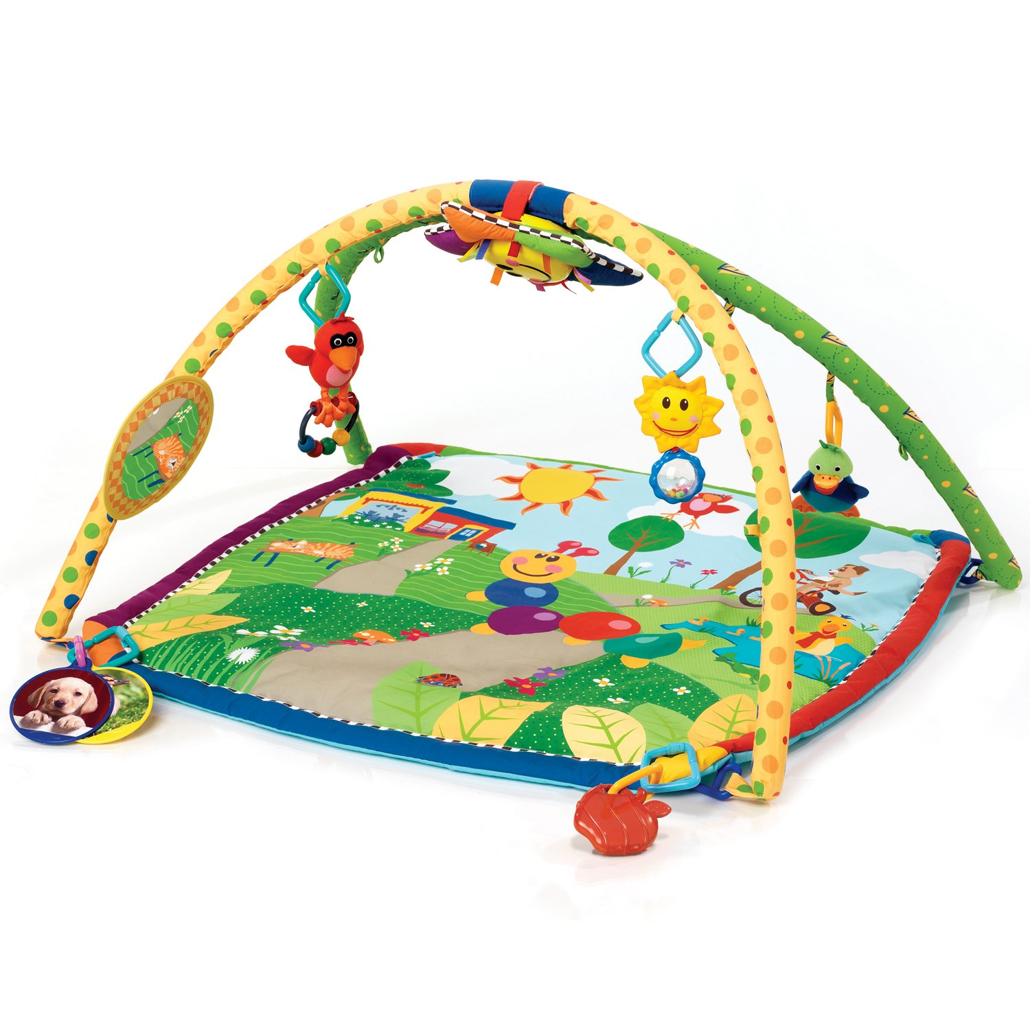 Amazon Baby Einstein Seek & Discover Activity Gym