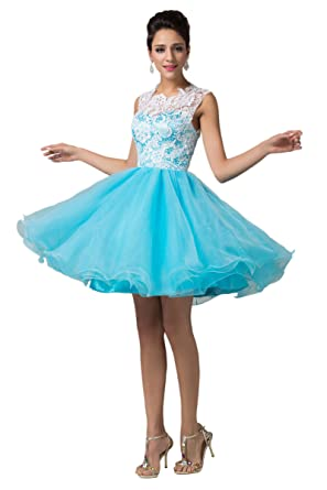 Lace & Soft Tulle Short Prom Evening Dress for Juniors ...